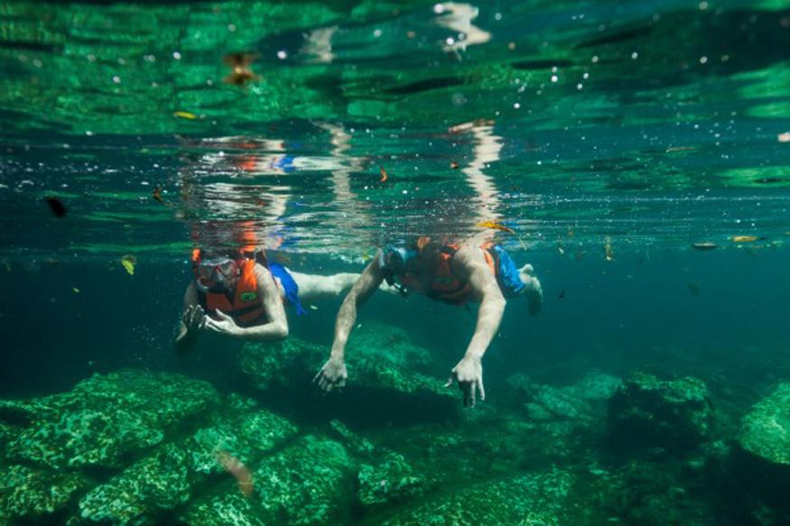 Snorkel en Cavernas